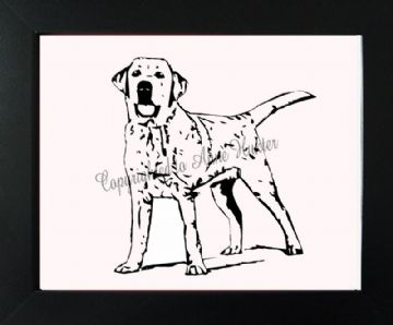 Short haired Labrador Vinyl Design
